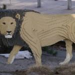 safari (7)