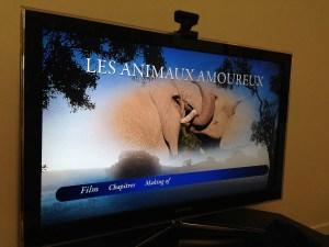 les animaux amoureux (5)