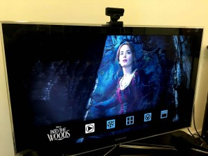 into the woods steelbook (9)