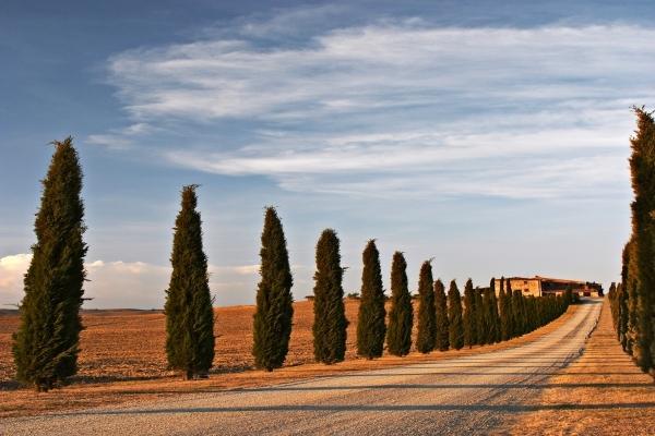 Italiaanse weg