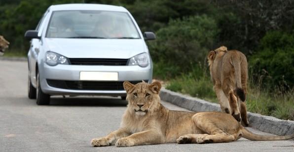 Zuid-Afrika Alternatieve Route