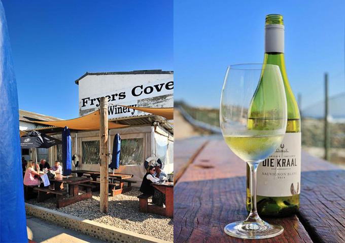 road trip zuid-afrika namibie fryers wijn