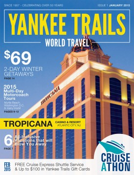 YTWT_Jan-2015-Catalog