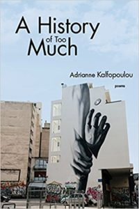Cover for A History of Too Much by Adrianne Kalfopoulou