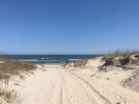 Looking East from the beach access at False Cape.