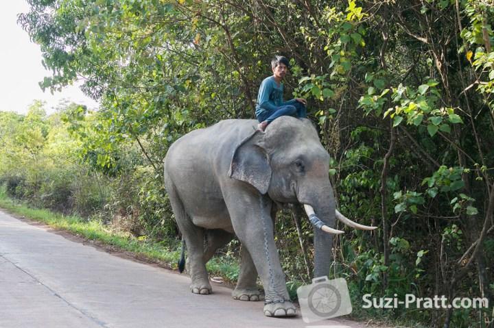 Ko Lanta Thailand Photography