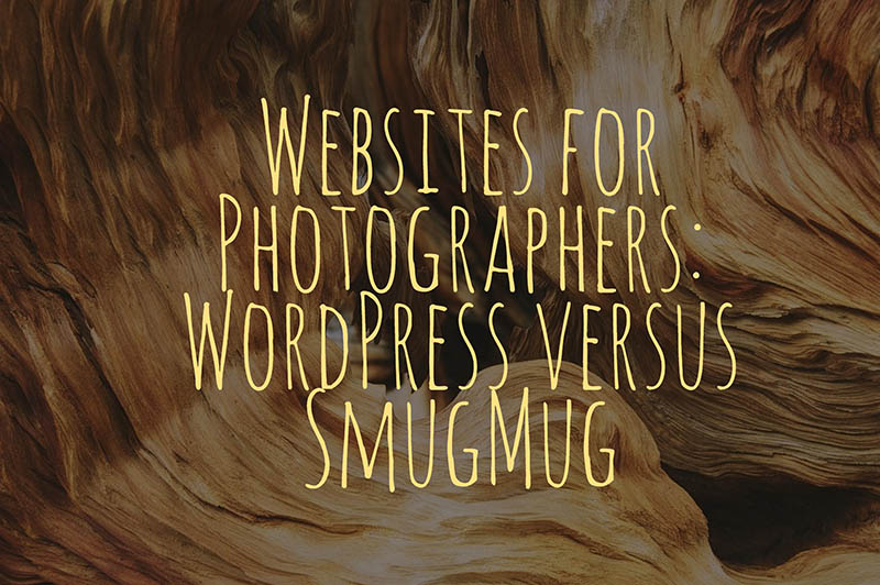 Websites for Photographers: Why SmugMug and WordPress Are Best