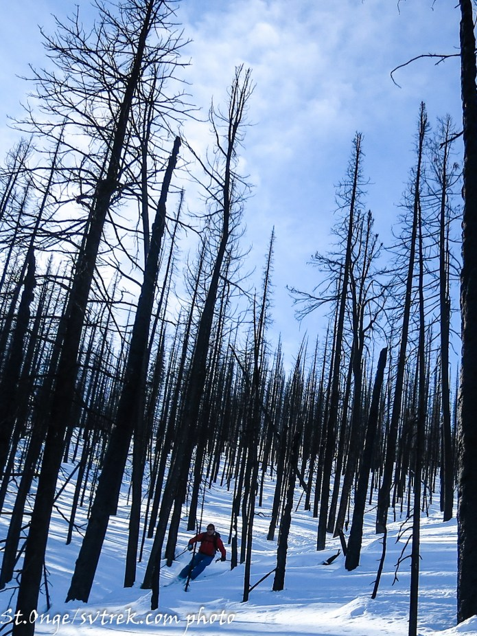 1200' north facing burn lines out the door of the Yurt