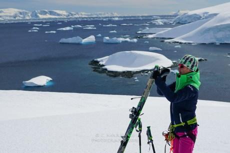 antartica-03648