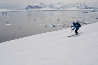 antartica-04689