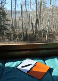 Janet Salmons writing space