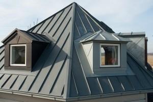 Modern Vertical Roof Windows