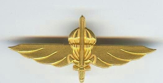 SSG uniform metal badge