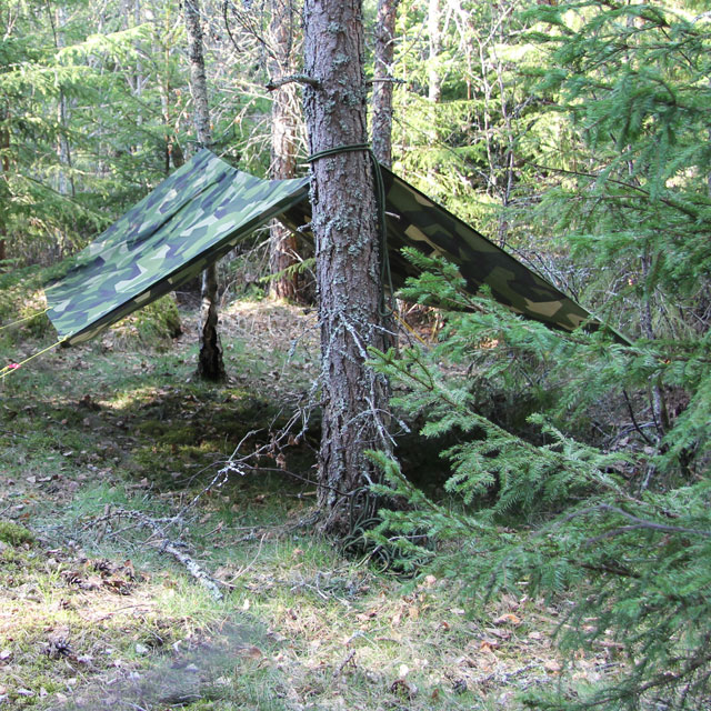 Forest picture of a Tarp M90 Light