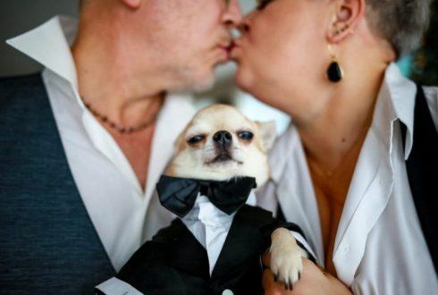 Знакомство. О Свадьбе Часть 3