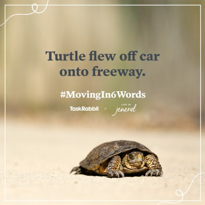 4-Moving-Contest-Blog-Instagram-Graphics