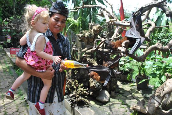Bali Travel with Kids