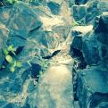 Rocks in Suzhou