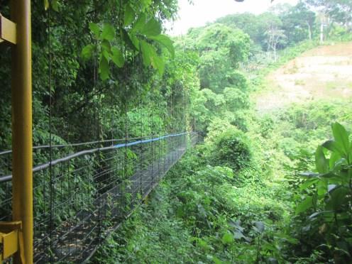 Hanging bridges!