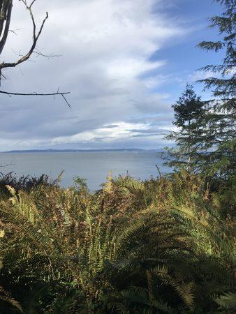 Seattle nature