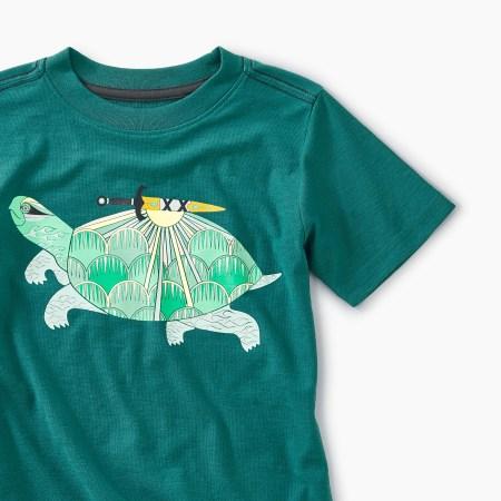 Hoan Kiem turtle