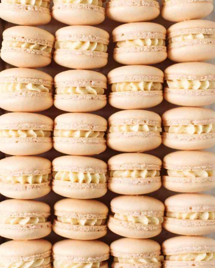 Close up shot of mandarin orange macarons lined up in rows
