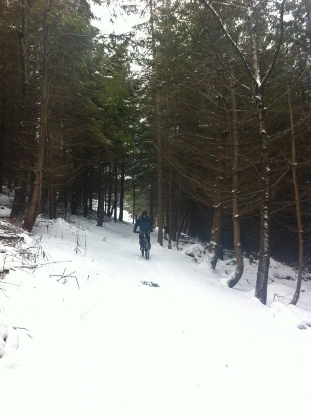 Dan climbs through the forest