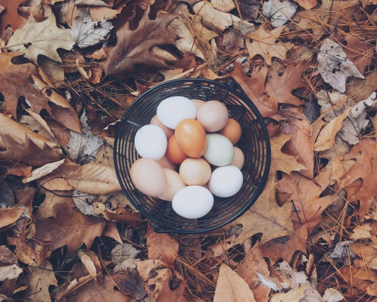 The Startup Chicken and Egg Problem