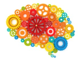 12 talks on understanding the brain