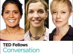Dazzling in the deep: A Fellows Friday conversation with Asha de Vos, Kristen Marhaver and Colleen Flanigan