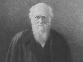 Talks to celebrate Charles Darwin's birthday