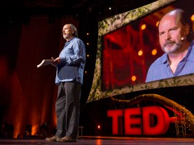 Defending the internet itself: Danny Hillis at TED2013