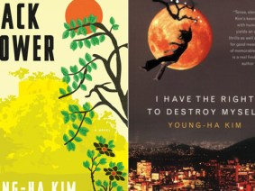 6 excerpts from Korean novelist Young-ha Kim