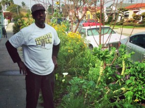 A visit to Ron Finley's LA garden — plus 5 more TED Talks about growing your own food