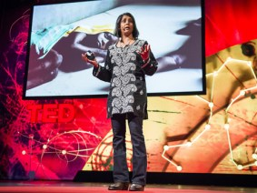 The past and future of malaria: A Q&A with Sonia Shah