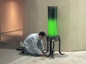 A streetlamp powered by … algae?