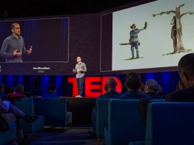 The strange story of the teddy bear: Jon Mooallem at TED2014