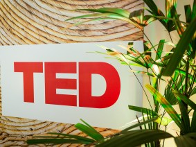 Reflections on TEDGlobal 2014, from the community