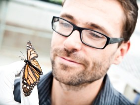 The other butterfly effect: A youth reporter finds out how monarchs fight their own parasites