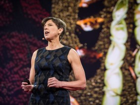 How genetic engineering can fight disease, reduce insecticide use and enhance food security: Pamela Ronald speaks at TED2015