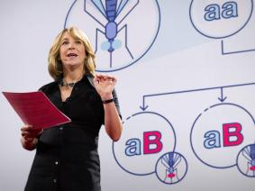 10 years of evolving biotech