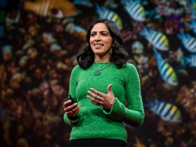 Harnessing the intelligence of the collective: Radhika Nagpal speaks at TED2017
