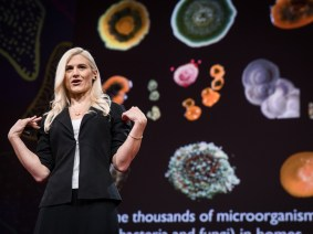 Bugs and bodies: The talks of Session 8 of TED2017