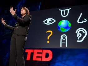 Pattie Maes develops a plant-robot hybrid and other news from the TED community