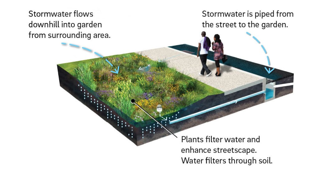 Diagram showing how a rain garden works