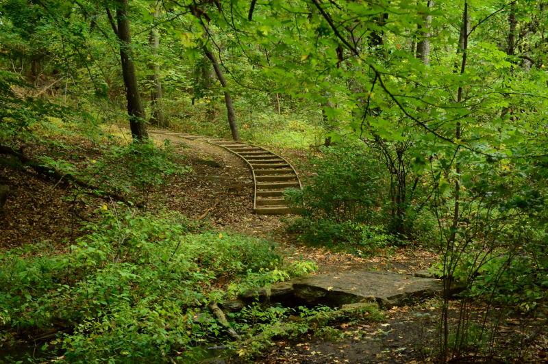 Seton Falls Park in the Bronx