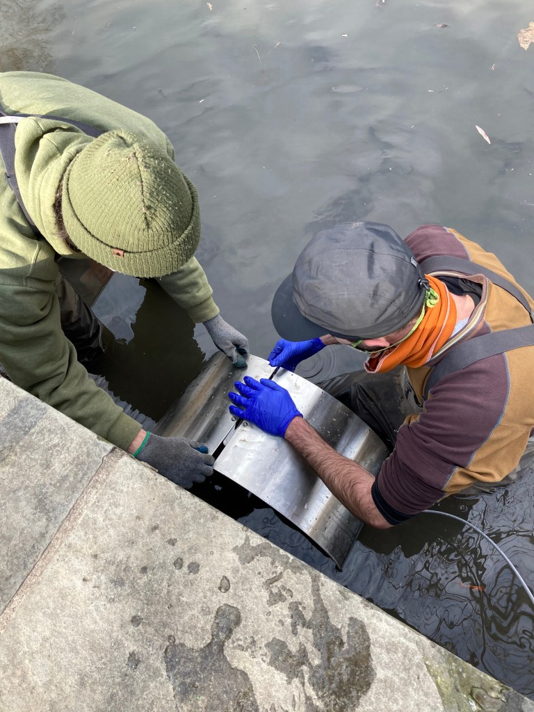 John Butler and Alex Byrne of Van Cortlandt Park Alliance positioning the pipe band holding the sensors into the pond's culvert.