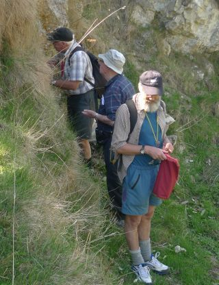 Looking for bryophytes on a limestone bank in pasture: Paddy Dalton (University of Tasmania), Peter Beveridge (Te Papa), and David Glenny (Landcare Research). Craigmore, near Timaru. Photo Leon Perrie. © Te Papa.
