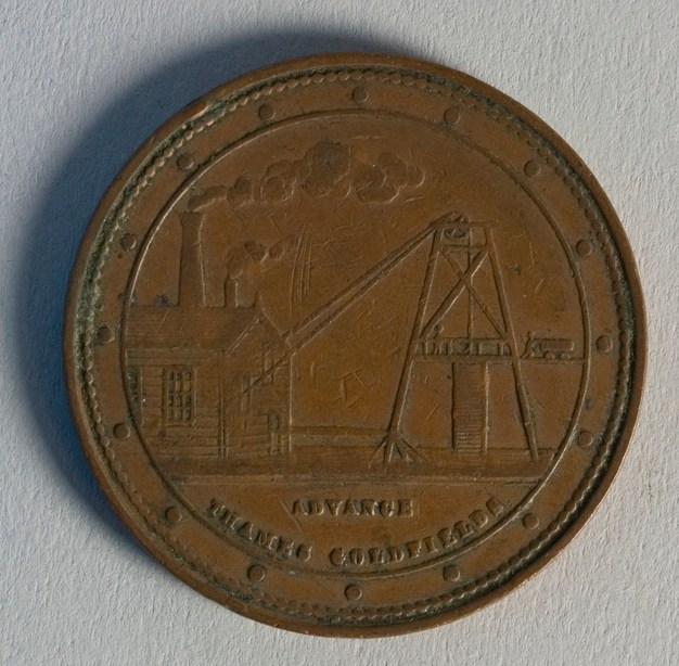 Reverse of token issued by George McCaul, 1874, Thames, maker unknown. Te Papa (NU002475)