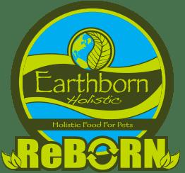 reborn-logo.png